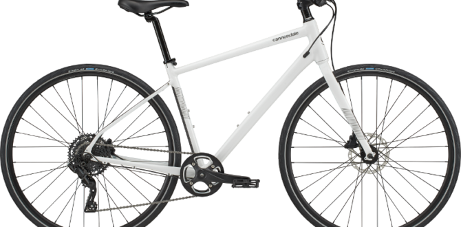CANNONDALE QUICK Disc 4 2020 WHT
